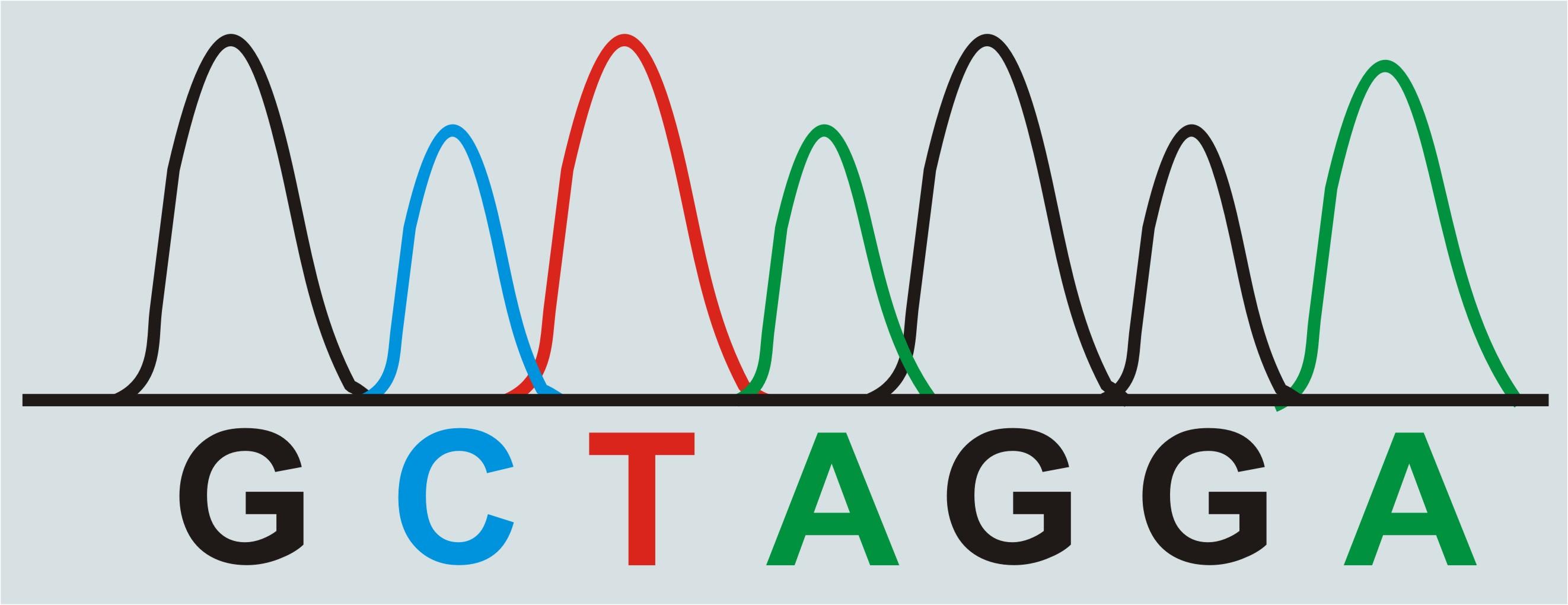 CMarZ - DNA Barcoding