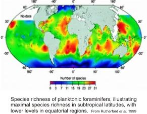 plankton species richness